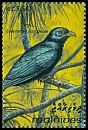 Cl: Asian Koel (Eudynamys scolopacea)(Repeat for this country)  SG 1848 (1993) 65