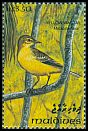 Cl: Yellow Wagtail (Motacilla flava)(Repeat for this country)  SG 1852 (1993) 65