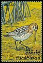 Cl: Common Snipe (Gallinago gallinago) SG 1855 (1993) 65