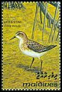 Cl: Little Stint (Calidris minuta) SG 1857 (1993) 65