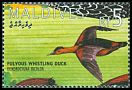 Cl: Fulvous Whistling-Duck (Dendrocygna bicolor)(Out of range)  SG 2169 (1995) 100