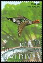 Cl: Eurasian Wigeon (Anas penelope)(Out of range)  SG 2174 (1995) 100