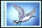 Cl: White Tern (Gygis alba)(Repeat for this country)  SG 3279 (2000) 35