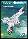 Cl: Red-billed Tropicbird (Phaethon aethereus) new (2015)