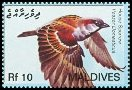 Cl: House Sparrow (Passer domesticus)(Introduced)  SG 4089 (2007) 250 [4/9]