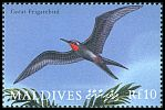 Cl: Great Frigatebird (Fregata minor) SG 3289 (2000) 200