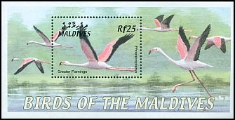 Cl: Greater Flamingo (Phoenicopterus roseus) SG 3692b (2002) 800