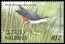 Cl: White-breasted Waterhen (Amaurornis phoenicurus) SG 3685 (2002) 140 [1/7]