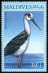Cl: Black-winged Stilt (Himantopus himantopus) SG 3282 (2000) 60