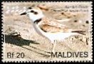 Cl: Snowy Plover (Charadrius alexandrinus) SG 4094 (2007) 400