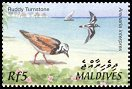 Cl: Ruddy Turnstone (Arenaria interpres)(Repeat for this country)  SG 3668 (2002) 100