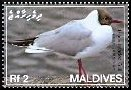 Cl: Black-headed Gull (Larus ridibundus) SG 4084 (2007) 110 [4/16]