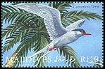 Cl: Common Tern (Sterna hirundo) SG 3291 (2000) 200