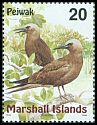 Cl: Brown Noddy (Anous stolidus) SG 1113 (1999)