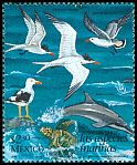 Cl: Heermann's Gull (Larus heermanni) SG 2521 (1998) 30