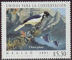 Cl: Tufted Jay (Cyanocorax dickeyi) SG 2700 (2001)  [1/16]