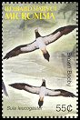 Cl: Brown Booby (Sula leucogaster) SG 1286d2 (2005)