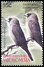 Cl: Black-faced Woodswallow (Artamus cinereus)(Out of range and no other stamp)  SG 1286d1 (2005)  [3/47]