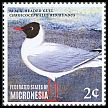Cl: Black-headed Gull (Larus ridibundus)(I do not have this stamp)  new (2014)