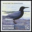 Cl: Black Tern (Chlidonias niger)(Out of range) (I do not have this stamp)  new (2014)