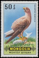 Cl: White-tailed Eagle (Haliaeetus albicilla) SG 578 (1970) 15 [3/19]