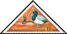 Cl: Greater Scaup (Aythya marila) SG 770 (1973) 160