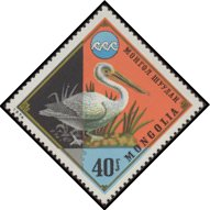 Cl: Dalmatian Pelican (Pelecanus crispus)(Repeat for this country)  SG 878 (1974) 25 [3/25]