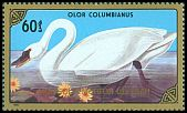 Cl: Tundra Swan (Cygnus columbianus)(Repeat for this country) (I do not have this stamp)  SG 1781 (1986) 100 [8/4]