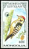 Cl: Lesser Spotted Woodpecker (Dendrocopos minor) SG 1827 (1987)