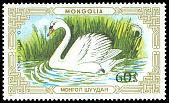 Cl: Mute Swan (Cygnus olor)(Repeat for this country)  SG 1844 (1987) 75