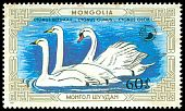 Cl: Mute Swan (Cygnus olor)(Repeat for this country)  SG 1847 (1987)
