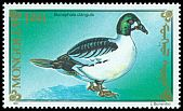 Cl: Common Goldeneye (Bucephala clangula) SG 2207 (1991)