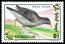 Cl: Common Moorhen (Gallinula chloropus) SG 2391 (1993)