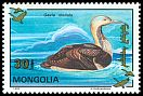 Cl: Pacific Loon (Gavia pacifica)(Out of range)  SG 2394 (1993)