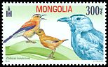 Cl: Mongolian Ground-Jay (Podoces hendersoni)(Endemic or near-endemic)  SG 3284 (2014)  [11/36]