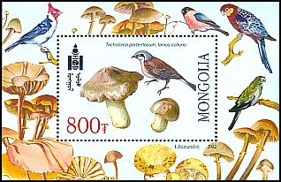 Cl: Red-backed Shrike (Lanius collurio)(Repeat for this country)  SG 3005a (2002)