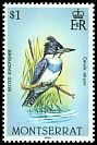Cl: Belted Kingfisher (Ceryle alcyon) SG 609 (1984) 125