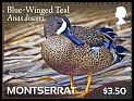 Cl: Blue-winged Teal (Anas discors)(I do not have this stamp)  SG 1503d (2012)