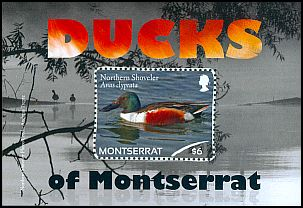 Cl: Northern Shoveler (Anas clypeata)(I do not have this stamp)  SG 1504 (2012)