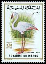 Cl: Greater Flamingo (Phoenicopterus roseus) <<Flamant rose>>  SG 755 (1988) 50