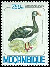 Cl: Spur-winged Goose (Plectropterus gambensis) SG 836 (1980) 45