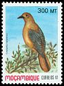Cl: Red-capped Robin-Chat (Cossypha natalensis) SG 1331 (1992)