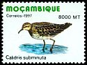 Cl: Long-toed Stint (Calidris subminuta) SG 1449 (1997)