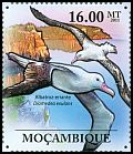 Mozambique new (2011)