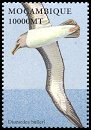 Cl: Buller's Albatross (Thalassarche bulleri)(Out of range and no other stamp)  SG 1624c (2002)