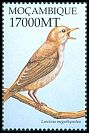 Cl: Common Nightingale (Luscinia megarhynchos)(Out of range)  SG 1618b5 (2002)
