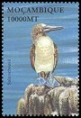 Cl: Blue-footed Booby (Sula nebouxii)(Out of range)  SG 1624h (2002)