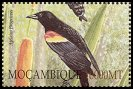 Cl: Red-winged Blackbird (Agelaius phoeniceus)(Out of range)  SG 1638b4 (2002)  [5/51]