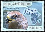 Cl: Rough-legged Hawk (Buteo lagopus)(Out of range)  new (2007)  [4/42]