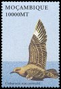 Cl: South Polar Skua (Stercorarius maccormicki)(Repeat for this country)  SG 1624b (2002)